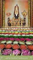 Tirupathi Balaji Mobile Wallpapers_1479
