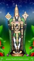 Tirupathi Balaji Mobile Wallpapers_1491