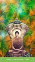 Buddha Mobile Wallpapers_317