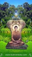 Buddha Mobile Wallpapers_326