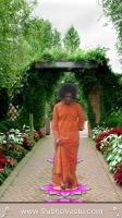 Shirdi Sai Mobile Wallpapers_561